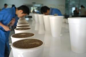 magnoliacoffee_honduras_2014